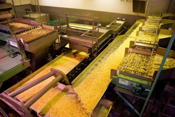 Вы не могли бы сообщить касательно, линий по производству замороженной картошки фри